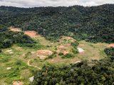 Montagne d'or, la mine qui divise la société guyanaise