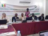 Maroc / Nigeria: lancement du projet d'extension du gazoduc d'Afrique de l'Ouest via le Sénégal