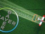 Bayer rachète Monsanto en pleine bataille sur Roundup, perturbateurs endocriniens et OGM