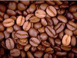 Le cours du café porté par la météo